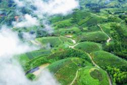 布央旅游创业孵化基地