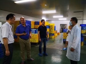 市中小企业服务中心深入日田药业开展政策宣讲及人才工作专项调研