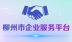 柳州市企业服务平台
