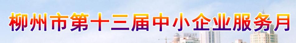 柳州市第十三届中小企业服务月